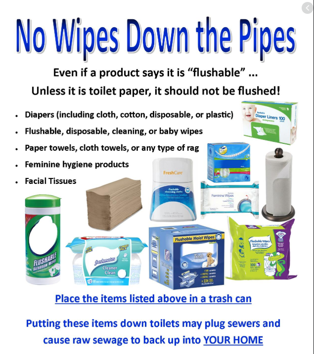 No wipes down the pipes flyer - all information provided below